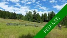 Creekfront / land / water / cabin / Greenwood / BC / Acreage / Hobby Farm / Farm / Ranch / For Sale / MLS © Real Estate Listing Jennifer Brock Macdonald Realty Okanagan South / Kootenay Boundary