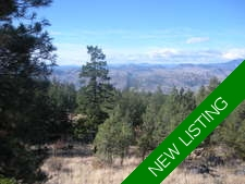 Osoyoos Rural Vacant Land for sale:    (Listed 2017-05-01)