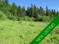 Greenwood / BC / Land / For Sale / MLS / Jennifer Brock / Royal LePage / Boundary Country