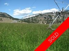 Rock Creek BC / Kettle River / Land / Acreage / Hay Farm / House / Home / For Sale / MLS © Real Estate Listing Jennifer Brock Macdonald Realty Okanagan South / Kootenay Boundary