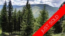 Carmi Beaverdell Kelowna BC Vacant Land near Crown Land and Lake for sale: King Solomon Mountain MLS listing realty real estate Jennifer Brock Macdonald Realty